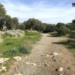La Laguna de Venus en el cabo de Milazzo Sicilia